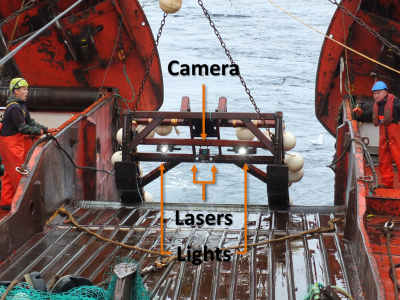My Research Makespace: Using underwater lasers to study the impact of deep-sea trawling in Greenland