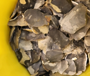 Festival of Stuff: Afternoon - Flint-Knapping Masterclass