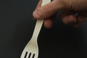Biodegradable Fork