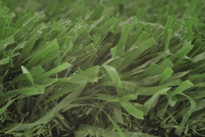 Artificial Grass (EnduraLight)
