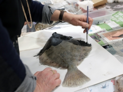 Festival of Stuff: Morning - Fish Printing Masterclass